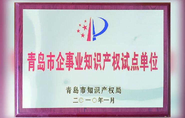 青岛市企事业知识产权试点单位